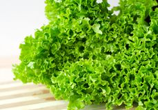 Free Fresh Green Lettuce Salad Leaves Closeup Stock Image - 57522301