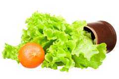 Fresh green lettuce salad with a mandarin Stock Images