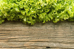 Fresh green lettuce salat on wooden background. Healthy food Stock Photography