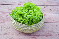 Fresh green lettuce in wicker plate Royalty Free Stock Photography
