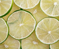 Fresh green lime Royalty Free Stock Image
