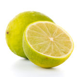 Fresh green lime Stock Images