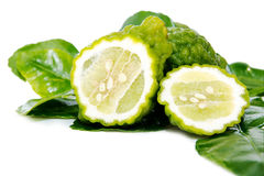 Fresh green lime. Kafir Stock Photos
