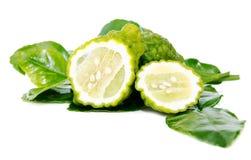 Fresh green lime. Kafir Stock Images