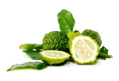 Fresh green lime. Kafir Royalty Free Stock Photo