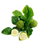Fresh green lime. Kafir Royalty Free Stock Image