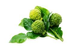 Fresh green lime. Kafir Royalty Free Stock Photos