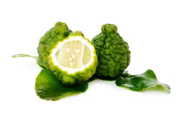 Fresh green lime. Kafir Stock Image