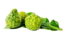 Fresh green lime. Kafir Royalty Free Stock Images