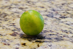 Fresh green lime Stock Photography