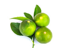 Fresh and Green lime. On white background Stock Images