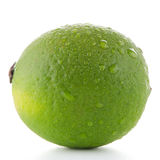Fresh green lime Royalty Free Stock Images