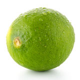 Fresh green lime Stock Photo