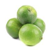 Fresh green limes. Royalty Free Stock Photos
