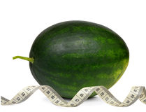Fresh green melon with measuring tape Royalty Free Stock Photos