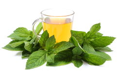 Fresh green mint and cup of beverage. White background Royalty Free Stock Image