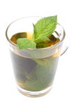 Fresh green mint in cup of beverage. White background Royalty Free Stock Image