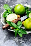 Fresh green mint and lime Royalty Free Stock Photos