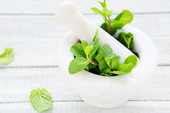Fresh green mint and mortar Royalty Free Stock Images