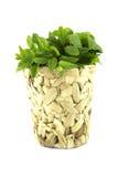 Fresh green mints Royalty Free Stock Image