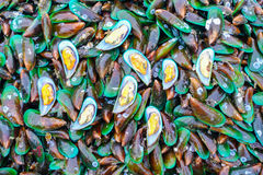 Fresh green mussels Stock Images