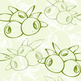 Fresh green olive pattern Stock Photography