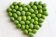 Fresh Green Olives. Hand picked raw green olives Stock Photography