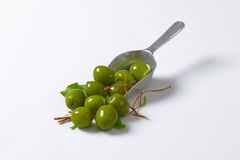 Fresh green olives. On metal scoop Stock Images
