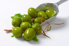 Fresh green olives. On metal scoop Royalty Free Stock Photo