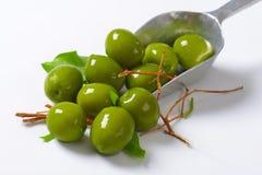 Fresh green olives Royalty Free Stock Photo