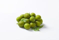 Fresh green olives. On white background Stock Image