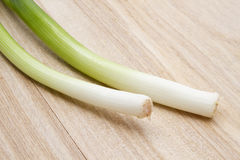 Fresh green onion Stock Photography