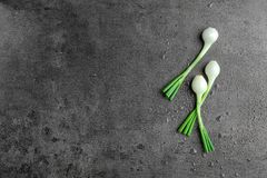 Fresh green onion on table, top view Stock Photos