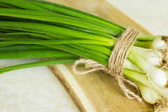 Fresh green onion on a wooden board. Stock Photos