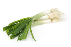 Fresh green onions Royalty Free Stock Images