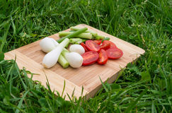 Fresh green onions and cherry tomatoes on the old wooden cutting board, closeup food, outdoors shot. Royalty Free Stock Photos