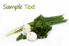 Fresh green onions, garlic and parsley isolated. Royalty Free Stock Photo