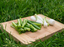 Fresh green onions on the old wooden cutting board, closeup food, outdoors shot. Stock Photo