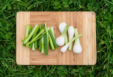 Fresh green onions on the old wooden cutting board, closeup food, outdoors shot. Stock Photos