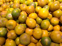 A fresh green and orange group of deliciously sweet, North Shokun oranges, naturally scarred and colored, grown in Thailand. Outward appearances can be royalty free stock photo