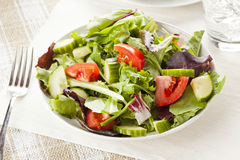 Fresh Green Organic Garden Salad royalty free stock photo