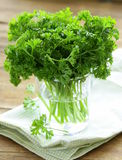 Fresh green organic parsley Royalty Free Stock Images