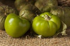 Fresh Green Organic Tomatillo Stock Photos