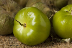 Fresh Green Organic Tomatillo Royalty Free Stock Images