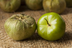 Fresh Green Organic Tomatillo Royalty Free Stock Photos