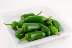 Fresh green Padron chilis Stock Images