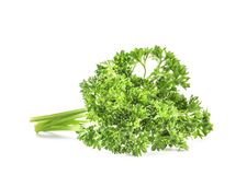 Fresh green parsley. On white background Stock Photos
