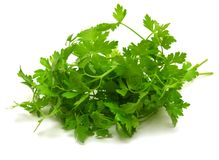 Fresh green parsley Stock Images