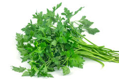 Fresh green parsley isolated on white background. Food ingredient Royalty Free Stock Photo