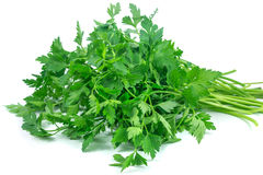 Fresh green parsley isolated on white background. Food ingredient Stock Photography